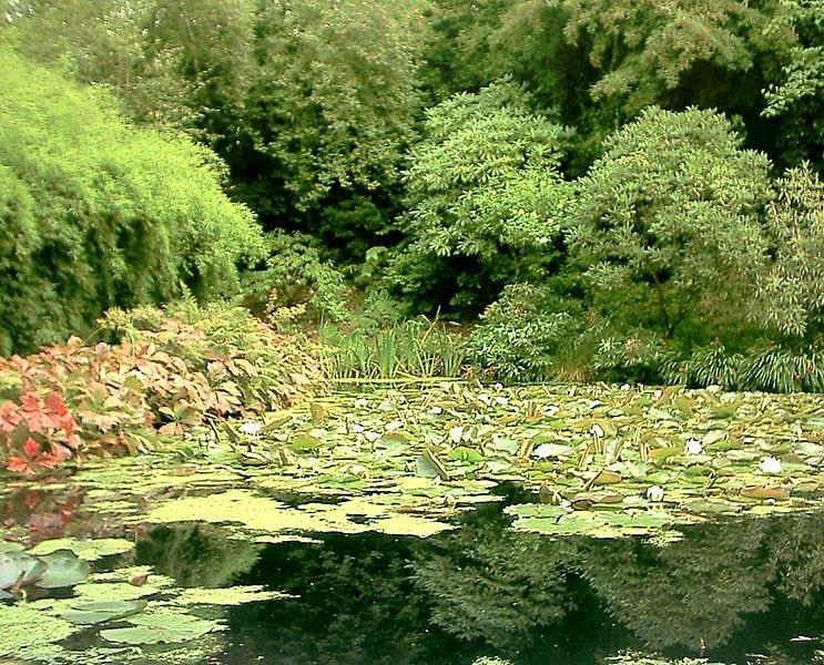 Inverewe gardens. Pic credit: Wojstl.