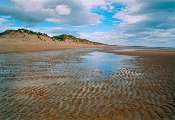 Balmedie beach. Pic credit: Patrick Mackie